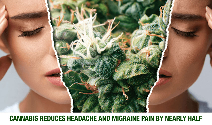Can Marijuana Help Treat Headaches Or Migraines?
